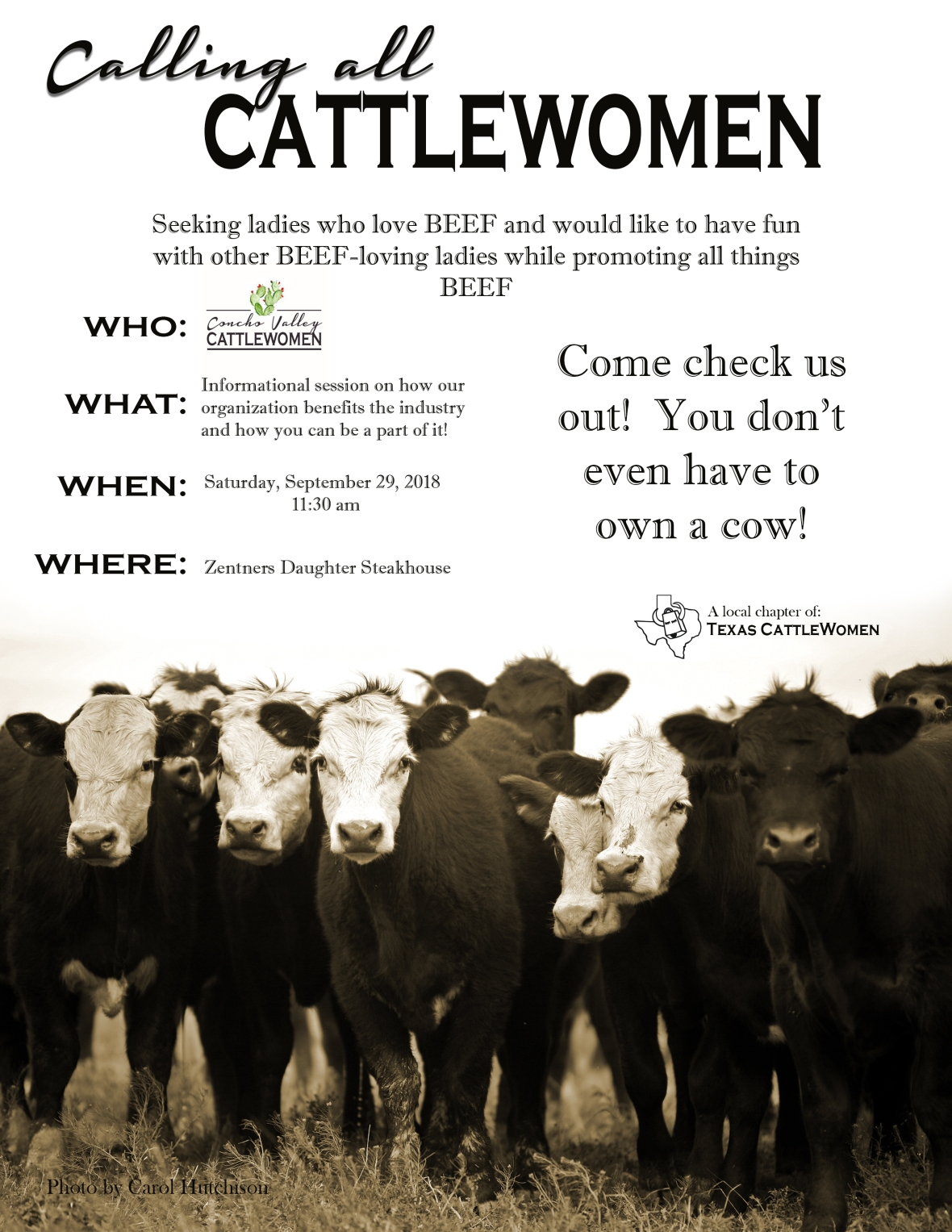 ConchoValley CattleWomen